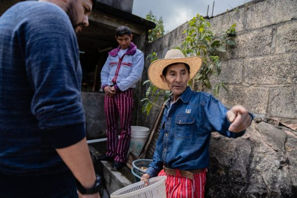 huehuetenango coffee plantation